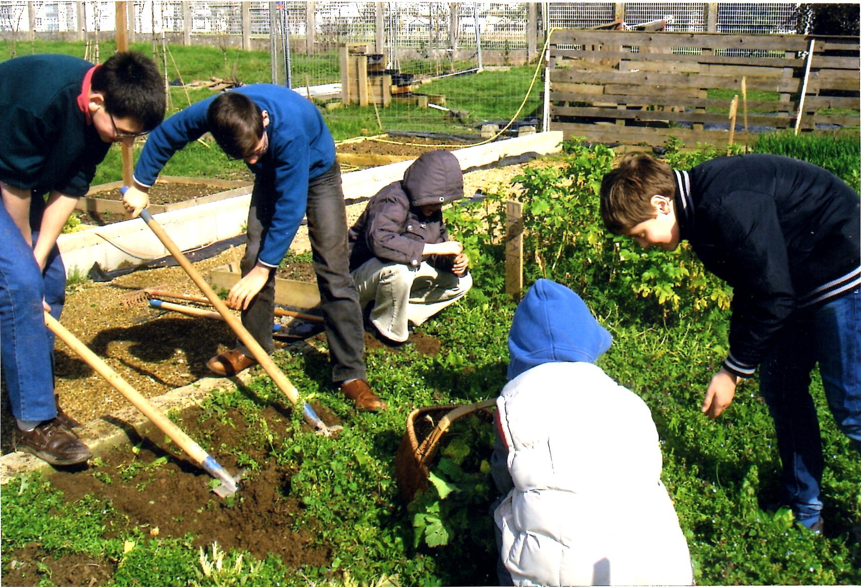 jardin077.jpg